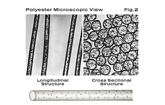 Polyester Microscopic View